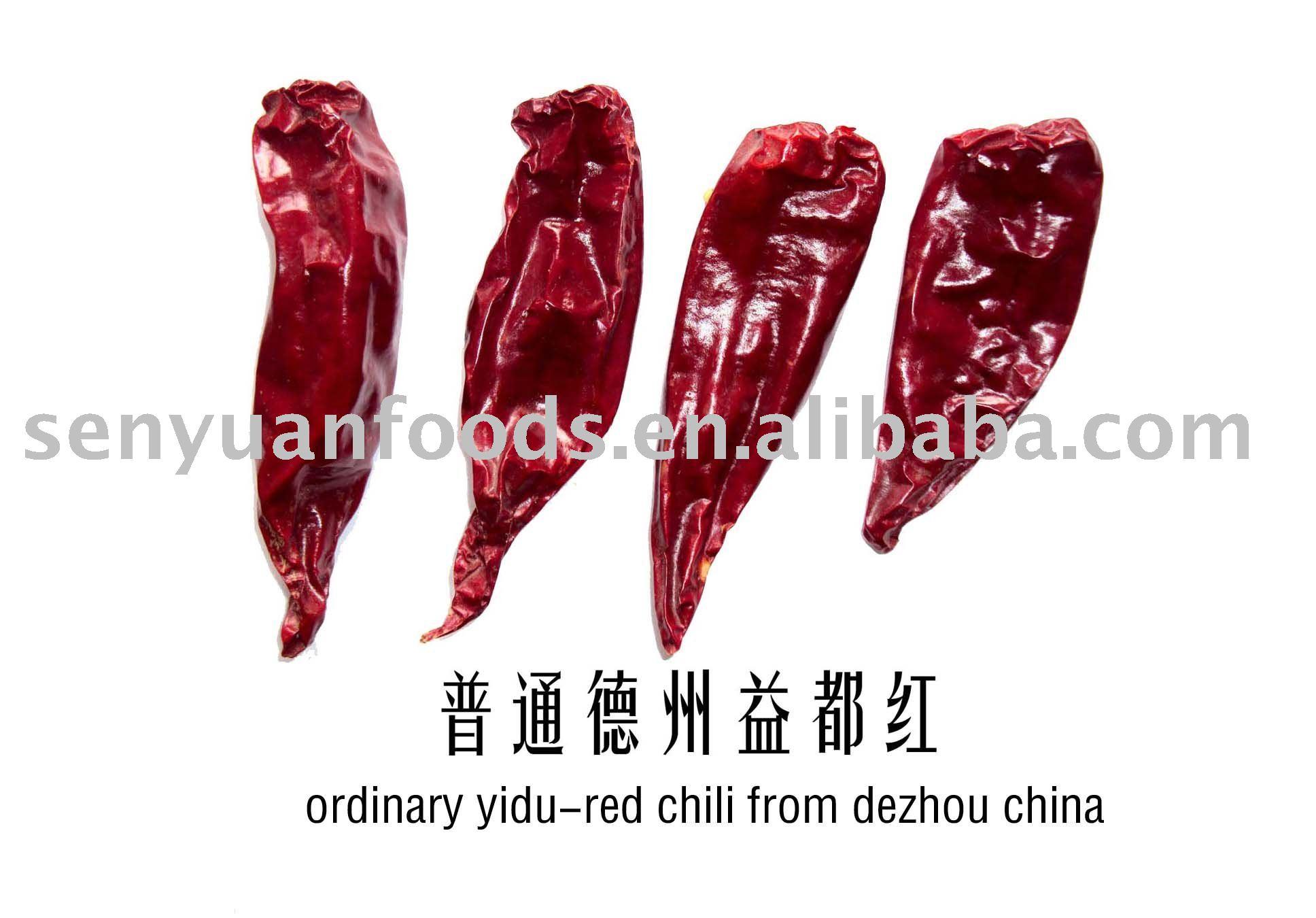 yidu hot chili pepper  red  chili