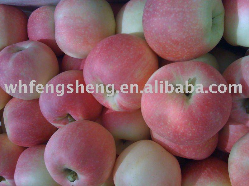 Temping gala apple