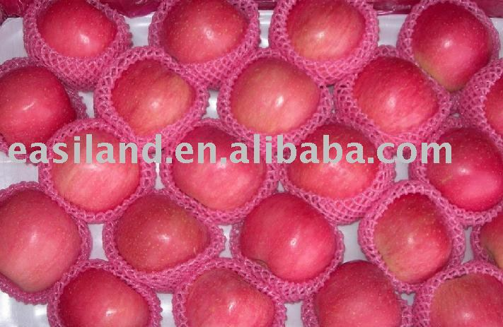 All Kinds Of Fresh Apple in High Quality For Export