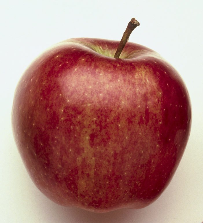 Starking Apple