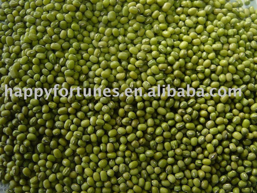 Green mung beans/mung beans