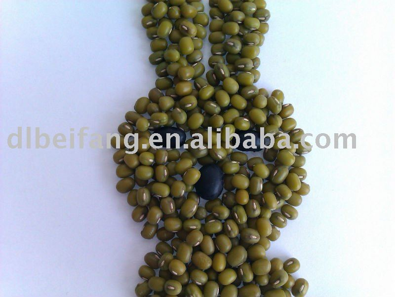 green mung bean/mung bean