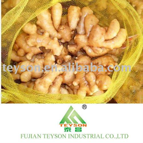 Supply top Air Dried Ginger from origin
