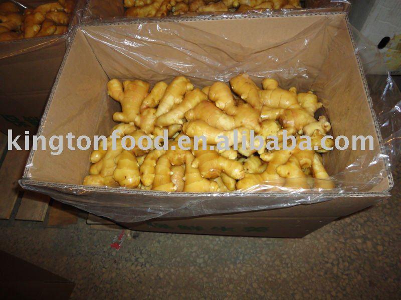 best price  fresh ginger