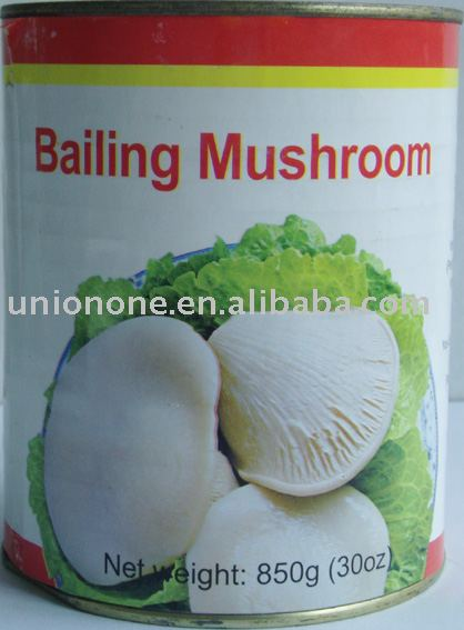 bailing mushroom