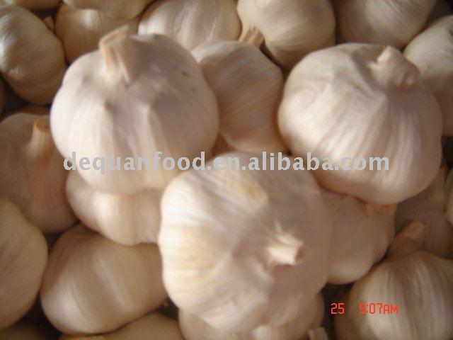 Dry  Pure   white  garlic, crop   2011