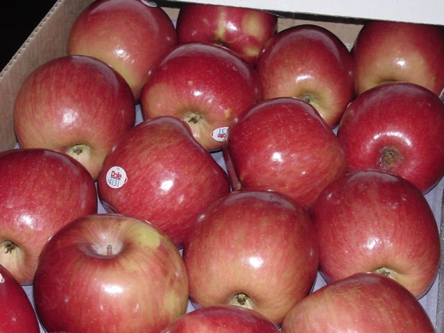 Trading apples food inc