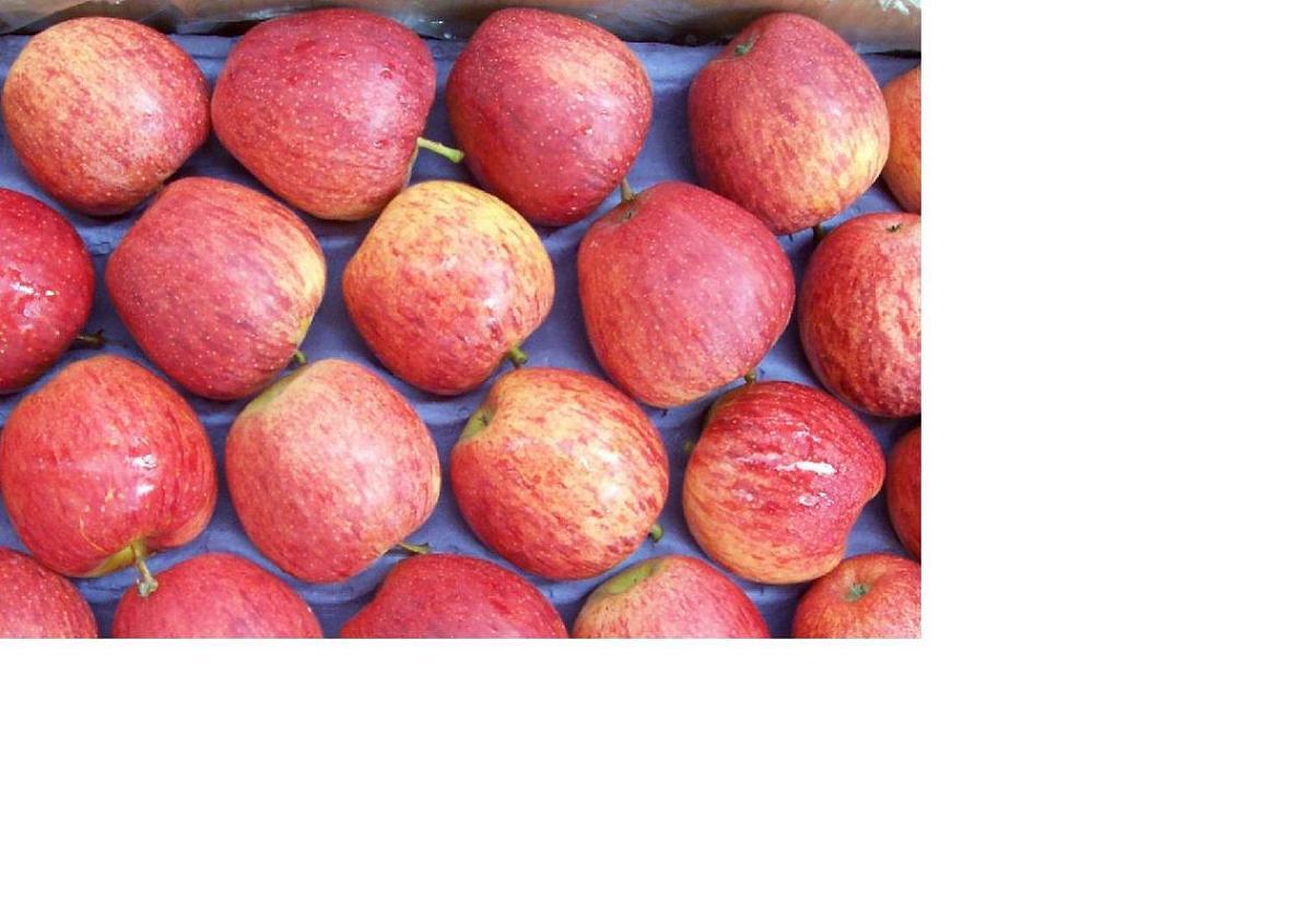 Royal Gala And Fuji Apples