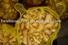 3. 10kgs/mesh bag. ginger. packing. cultivation type. place of origin...