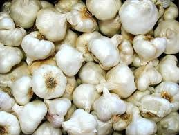 Dry Garlic,Pure Garlic,Organic Fresh Peeled Garlic