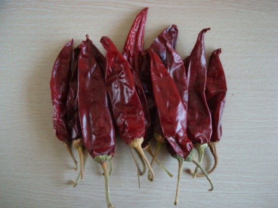 Saleable American red chili