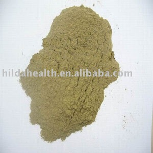 Oregano leaf powder