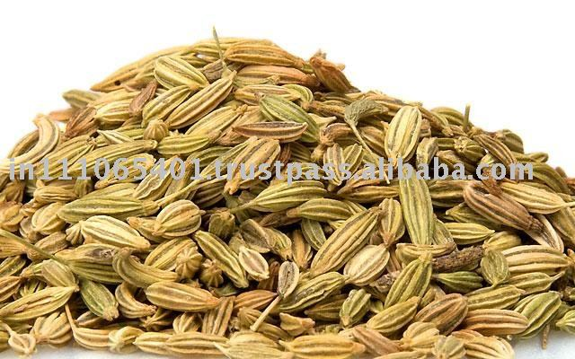 Fennel Seeds in Malay Fennel Seed Oil