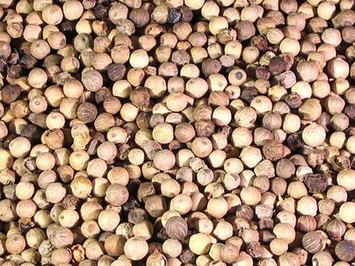 Organic White Pepper Corns-Whole
