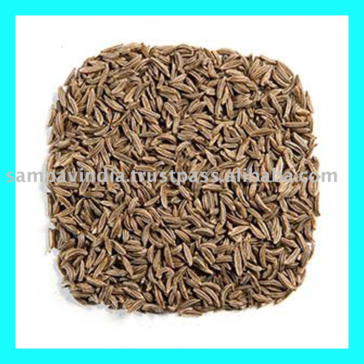 CARAWAY SEEDS products,India CARAWAY SEEDS supplier Caraway Seeds Indian Name