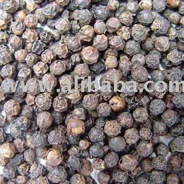 Vietnam black pepper for sale