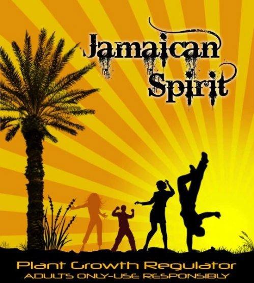 JAMAICAN SPIRIT 3GR