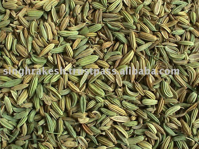 Fennel Seeds in Arabic Fennel Seed Whole