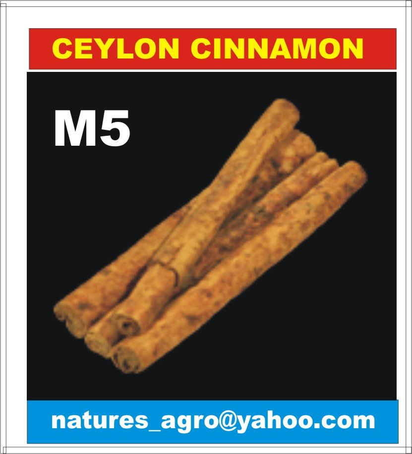 World Best CINNAMON from Sri Lanka - /M5/C4/C3/Quillings