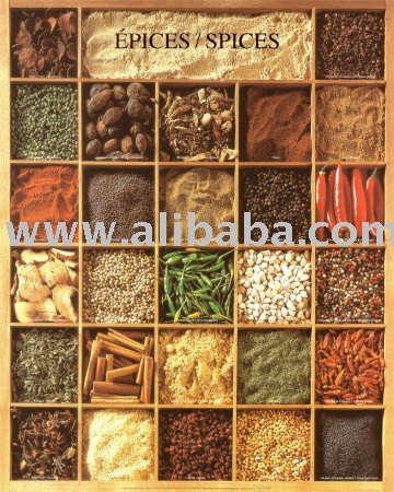 All types of Condiments,spices and herbs for sale