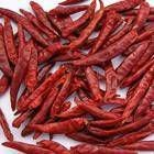 quality chilli pepper and black and white pepper for sale