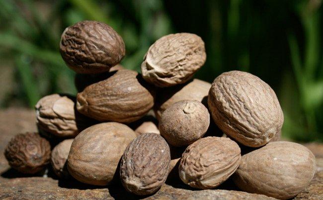 Nutmeg products,Madagascar Nutmeg supplier