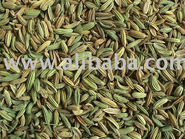 Indian Organic Fennel ...