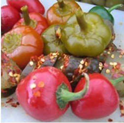 Smokey Pickly Cherry Peppers Slices