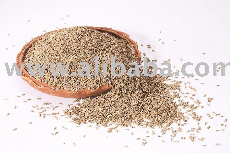 Cummin Seeds products,India Cummin Seeds supplier