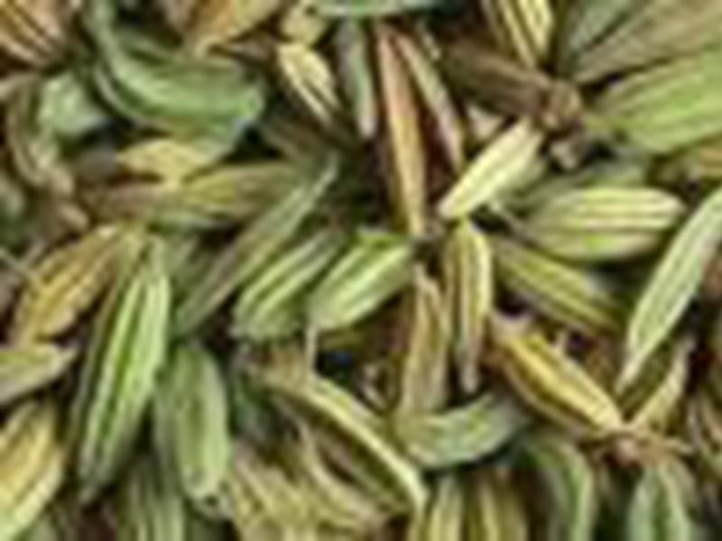 how to cook fennel seeds