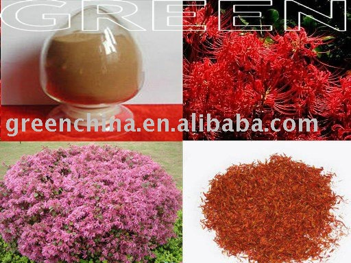 Safflower Extract, carthamus tinctorius extract, Flos carthami extract