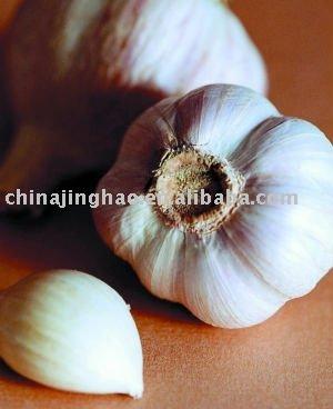 Shouguang Fresh  Young   Garlic  2010