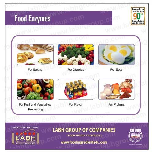 Food Enzyme, Industrial Enzymes products,China Food Enzyme ...