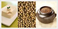 Soybean Curd, Soybean Paste