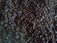 Indonesian Coffee Robusta