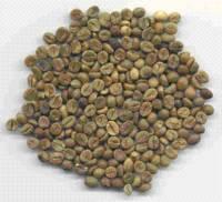 Vietnam Coffee Robusta Grade