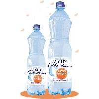 Vichy Celestins Mineral Water