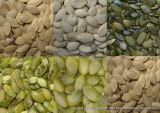 Pumpkin Seed and Pumpkin Seed Kernels