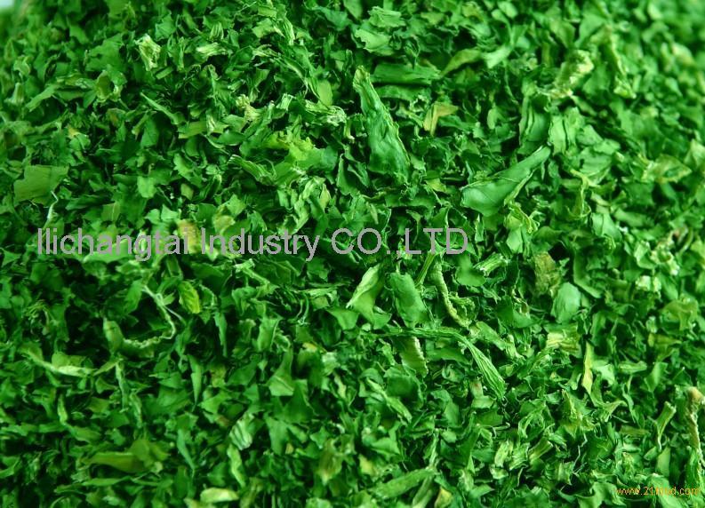 https://img.21food.com/img/images/2013/4/11/ad-vegetables-12160300.jpg