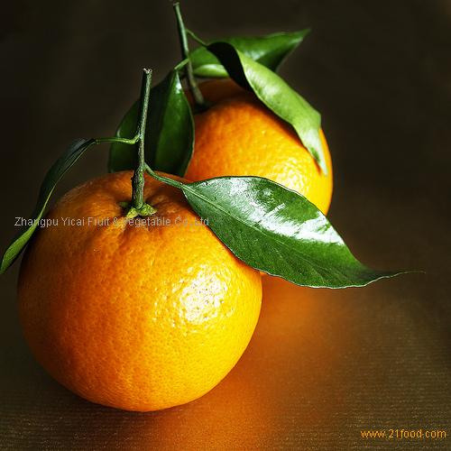 Honey mandarin orange