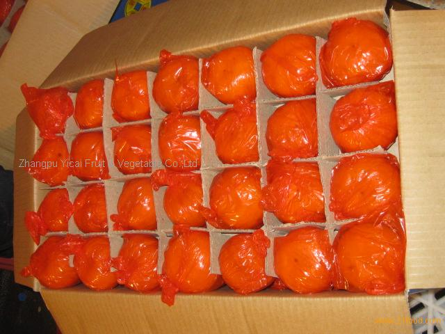 Chinese mandarin orange 01