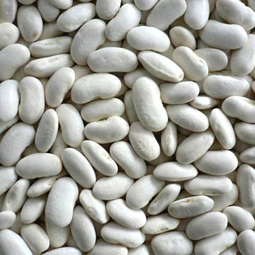White Kidney Bean Extracts