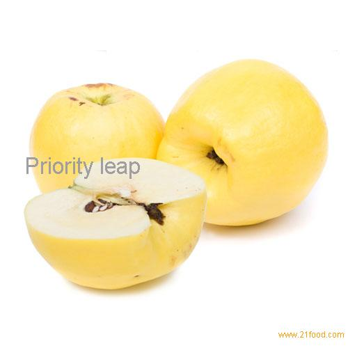 Types Of Yellow Apple's http://www.21food.com/products/yellow-apple-109573.html