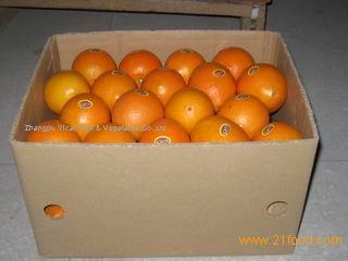 Top navel orange
