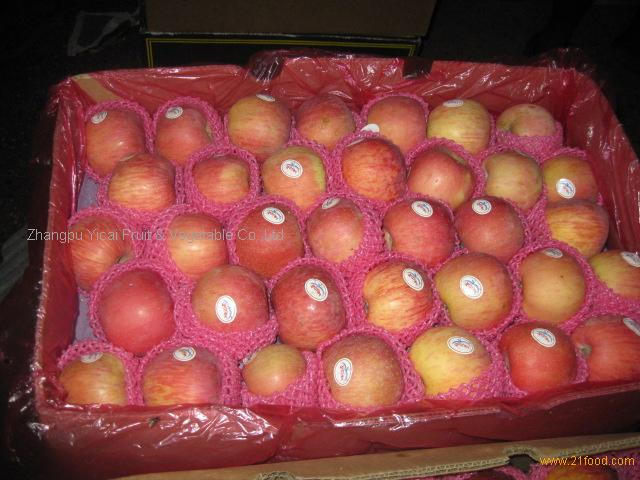 Top fuji apple 002