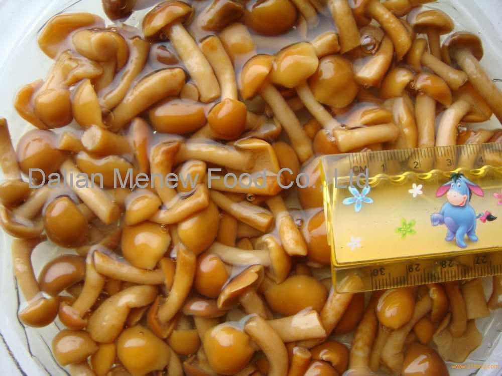 CANNED NAMEKO cap 1.5-3cm, stem<3.5cm