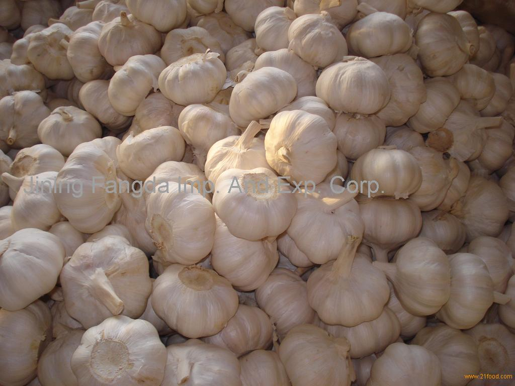 its about onion cold storage infomation At the time of shipment onions must show no signs of excessive moisture due to unnatural causes (such as prolonged exposure to rain) likely to impair their capacity for travel or keeping qualities the condensation observed immediately after cold storage is not regarded as 'abnormal' g) free of foreign.