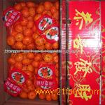 Nanfeng orange6