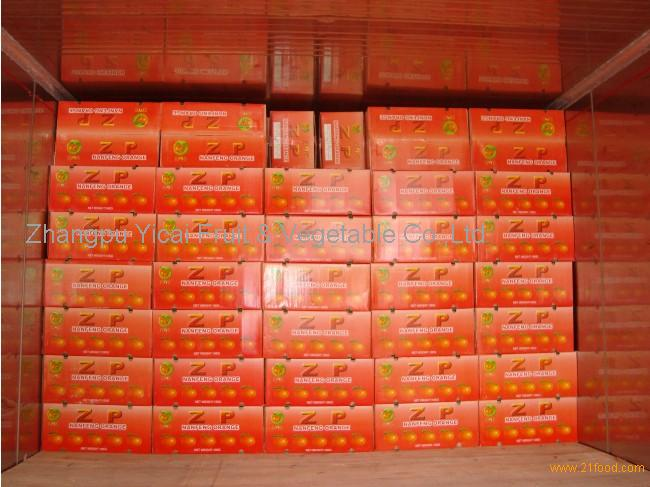 Nanfeng orange31
