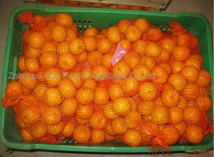 Nanfeng orange34